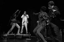 royal-disco-funk-synicate-2
